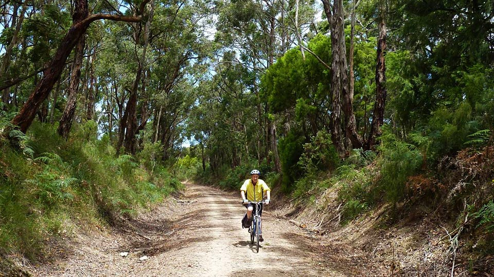 cycling great southern rail trail